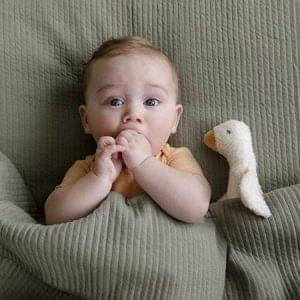 pequeno-ganso-peluche-boneco-de-companhia-little-dutch-1