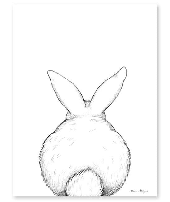poster-lilipinso-coelho-