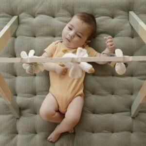 ginasio-bebe-little-dutch-
