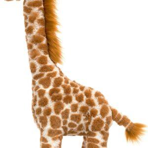 Girafa Dakota