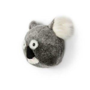 wild-soft-koala-